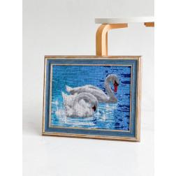 AA002ан3326 Лебеді