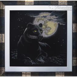 АА402кн6060 Чорна пантера