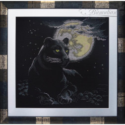 Чорна пантера АА402кн6060