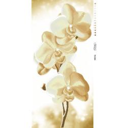 Схема для вишивки бісером Барвиста Вишиванка Золотисті Орхідеї 46х95 ТК004пн4695