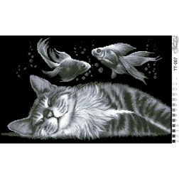 Набір для вишивки бісером Барвиста Вишиванка Щасливий сон 51х32 ТТ007пн5132k